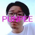 PUNPEE120-120